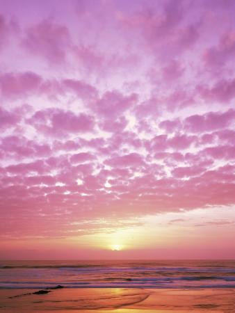 craig-tuttle-pink-sunset-over-heceta-beach