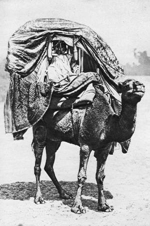 crete-a-girl-on-a-camel-litter-algeria-1922