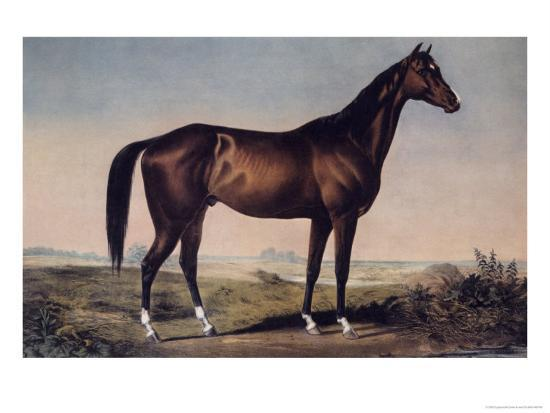 currier-ives-lexington-the-celebrated-horse