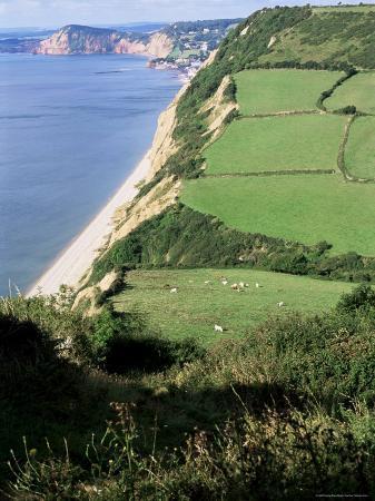 cyndy-black-coastline-near-sidmouth-devon-england-united-kingdom