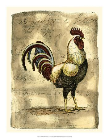d-bookman-tuscany-rooster-i