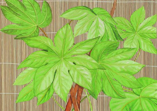 d-patrian-tropical-leaves-i