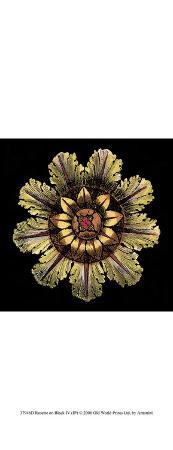 dacarlo-antonini-rosette-on-black-iv