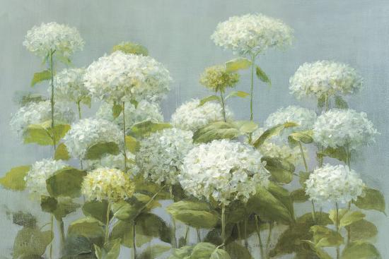 danhui-nai-white-hydrangea-garden