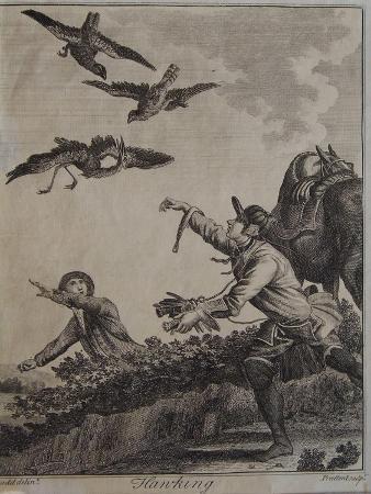 daniel-dodd-hawking-1792