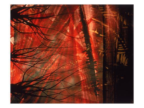 daniel-root-abstract-image-in-red-and-black