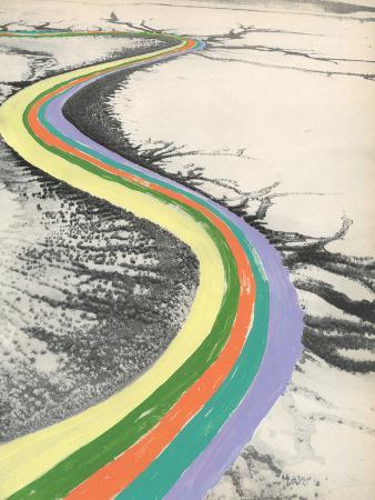 danielle-kroll-rainbow-road