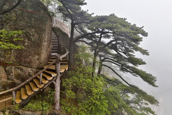 darrell-gulin-trail-in-fog-yellow-mountains-a-unesco-world-heritage-site