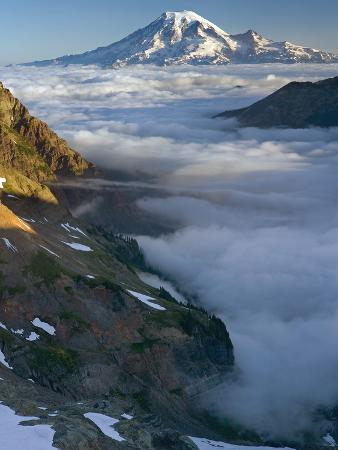 david-cobb-view-of-mt-rainier-above-the-clouds-from-the-goat-rocks-wilderness-washington-usa