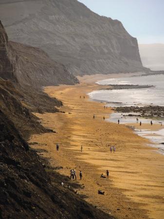 david-hughes-charmouth-jurassic-coast-unesco-world-heritage-site-dorset-england-united-kingdom-europe