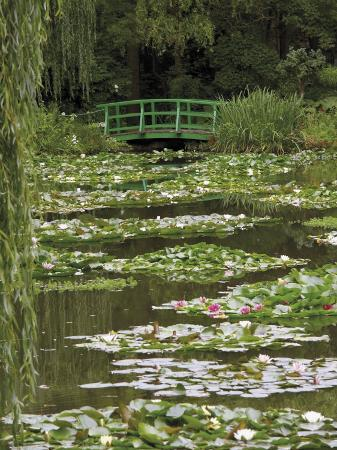 david-hughes-japanese-bridge-and-lily-pond-in-the-garden-of-the-impressionist-painter-claude-monet-eure-france