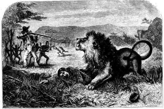 david-livingstone-saved-from-a-lion-by-mebalwe-a-native-schoolmaster-1857