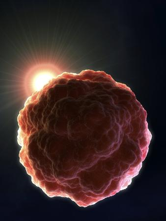 david-mack-stem-cell-research-conceptual-artwork