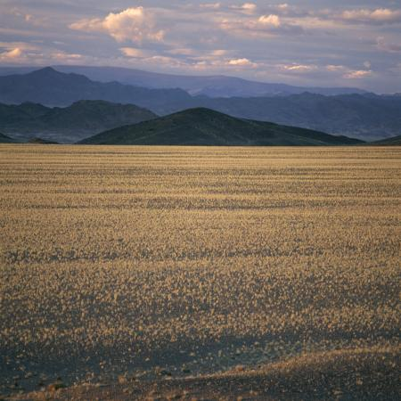 david-pluth-view-of-the-beginning-of-the-altai-range-from-the-gobi-desert