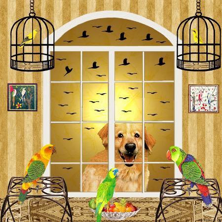 david-sheskin-bird-dogs-iv
