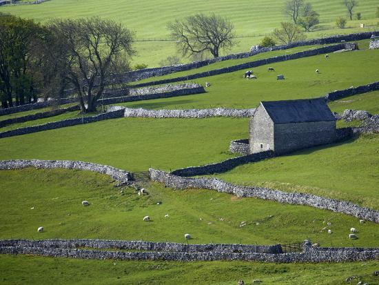 david-wall-farmland-stone-walls-and-buildings-near-malham-yorkshire-dales-north-yorkshire-england