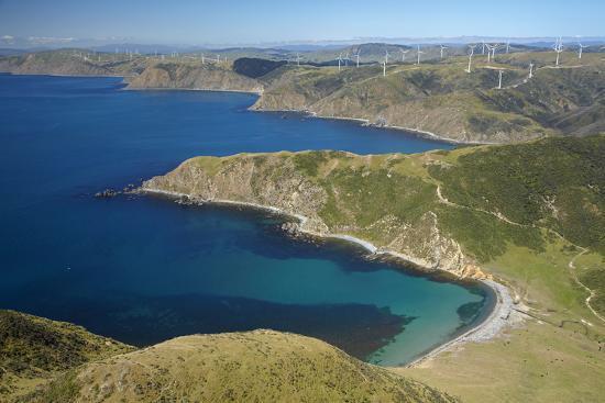 david-wall-ohau-bay-te-ikaamaru-bay-makara-wind-farm-north-island-new-zealand