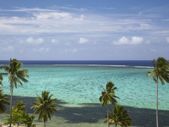 david-wall-palm-trees-and-coral-reef-crusoe-s-retreat-coral-coast-viti-levu-fiji-south-pacific