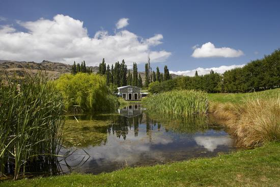 david-wall-the-shed-and-pond-northburn-vineyard-central-otago-south-island-new-zealand