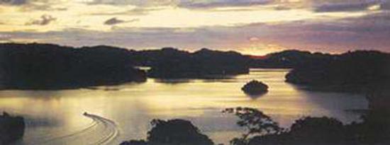 dawn-in-polinesia