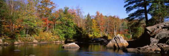 deciduous-trees-along-moose-river-adirondack-mountains-adirondack-state-park-new-york-usa
