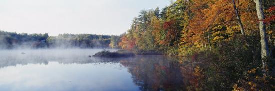 deciduous-trees-along-the-chocorua-lake-white-mountains-national-forest-new-hampshire-usa