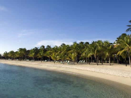 defreitas-michael-beach-at-harbour-village-resort-bonaire-netherlands-antilles-caribbean-central-america