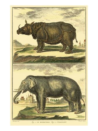 denis-diderot-diderot-s-elephant-and-rhino