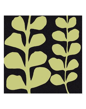 denise-duplock-green-fern-on-black