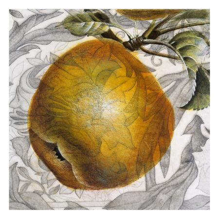 dennis-carney-fruit-study-iv