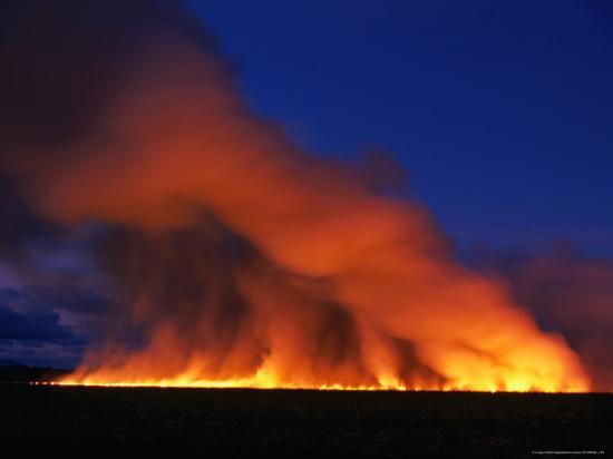 dennis-jones-harvested-sugar-cane-fields-burning-off-mossman-australia