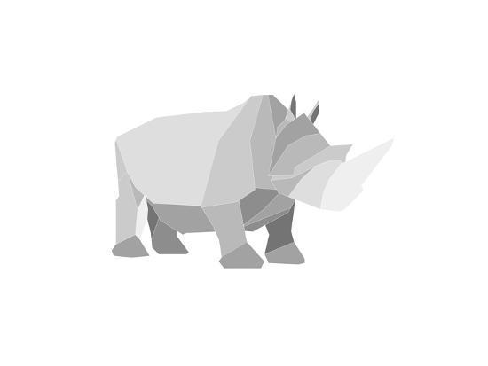 denny-stoekenbroek-rhino
