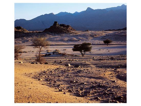 desert-and-mountain-horizon