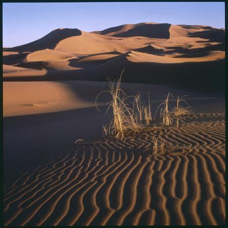 desert-landscape-at-merzouga-morocco-north-africa