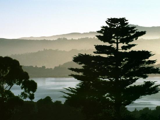 diane-miller-hazy-mountain-lake-seen-from-top-of-hill-in-tiburon-northern-california-usa