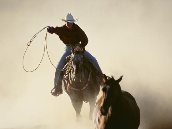 dlillc-cowboys-lassoing-on-the-range