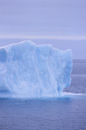 dlillc-iceberg