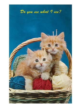 do-you-see-what-i-see-kittens-in-basket-with-yarn