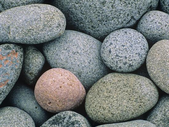 don-johnston-detail-of-pebbles-on-long-island-nova-scotia-canada