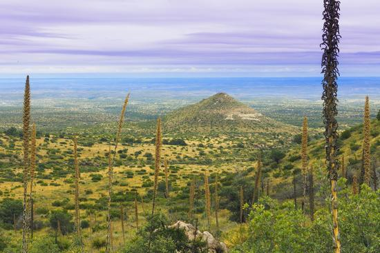 don-paulson-usa-texas-guadalupe-mountains-np-landscape-with-small-mountain