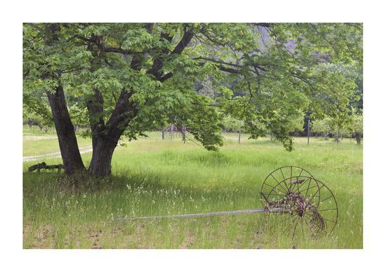 donald-paulson-homestead-fields