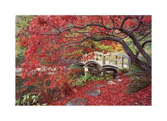 donald-paulson-japanese-gardens