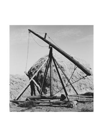 dorothea-lange-hay-derrick
