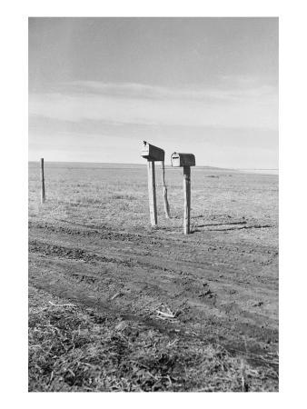dorothea-lange-the-rolling-lands