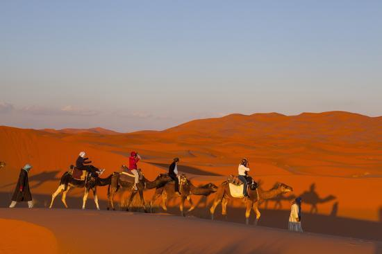 doug-pearson-tourists-on-camel-safari-sahara-desert-merzouga-morocco-north-africa-africa