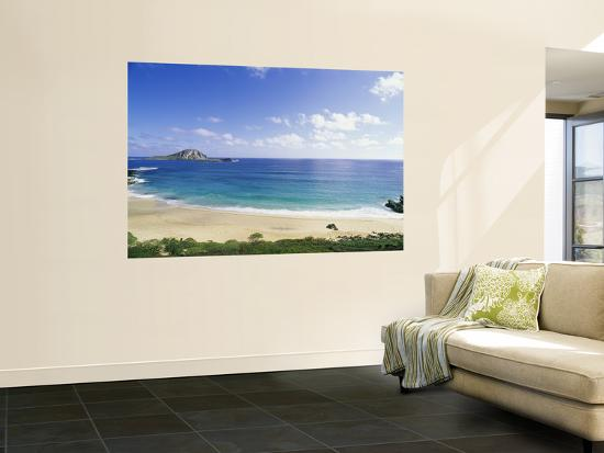 douglas-peebles-makapuu-beach-hawaii-usa