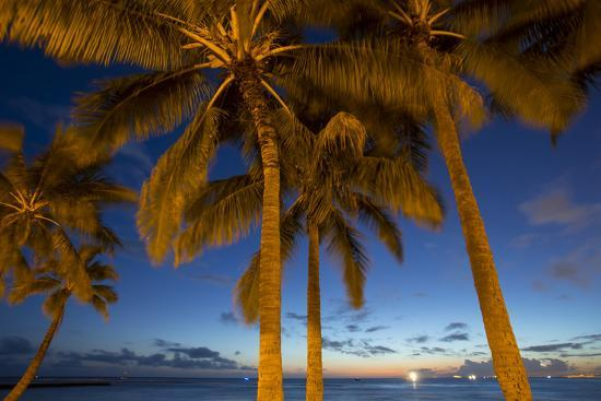 douglas-peebles-twilight-waikiki-honolulu-oahu-hawaii