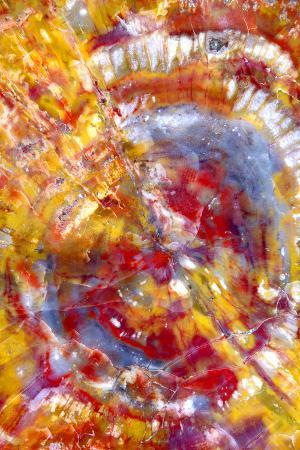 douglas-taylor-spiral-galaxy