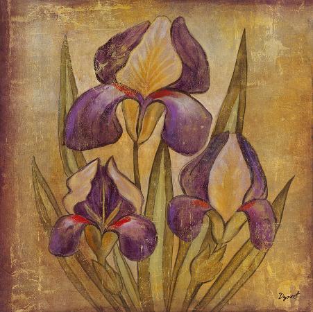 dysart-ancient-floral-i