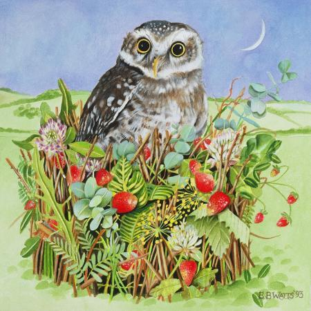 e-b-watts-owl-in-a-woodland-basket-1993